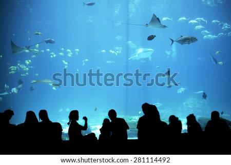 People in aquarium - stock photo