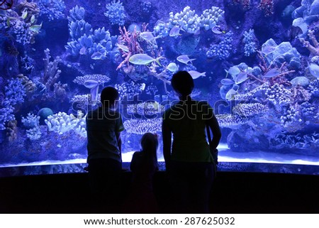 people look at a large aquarium - stock photo