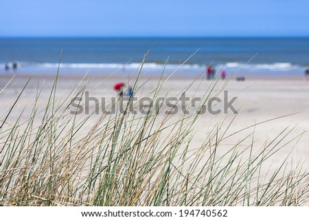People On The Beach In Norderney with some grass in the foreground and focus on foreground. - stock photo