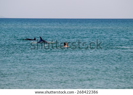 people sea vacation thailand travel dolphin