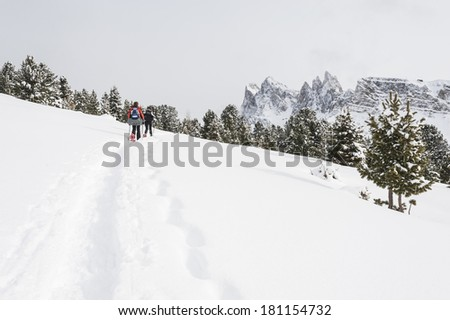 People snowshoeing in the Dolomites, on a snowy day - stock photo