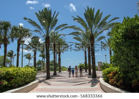 People walk past the numerous palm trees, to the coast of Miami.    July 10, 2016