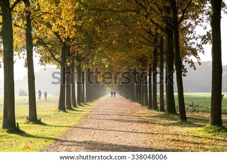 People walking on footpath, lane with trees on both sides in autumn in Baarn, Netherlands - stock photo
