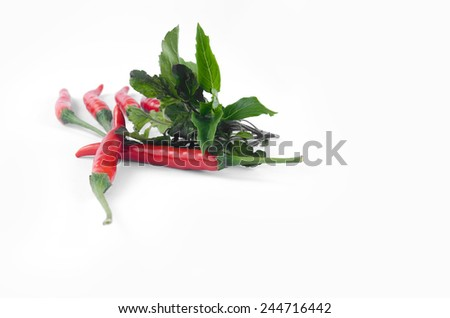 peper red with Basil isolated white background - stock photo