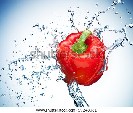 Pepper in spray of water. Juicy pepper with splash on white background - stock photo