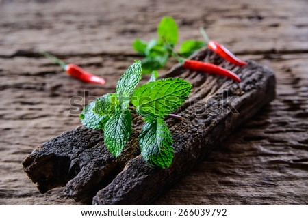 Pepper mint leaves and chilli on old wood background - stock photo
