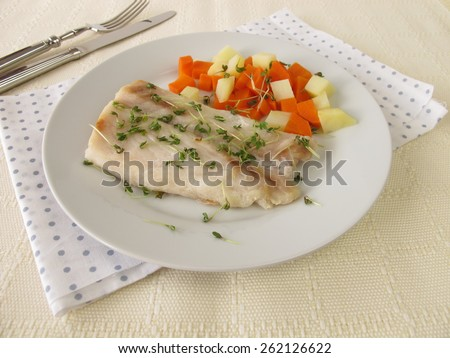 Perch fillet with vegetables and cress - stock photo