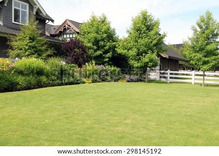 perennial flower summer garden front yard stock photo safe to use
