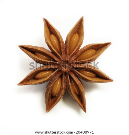 Perfect anise star over white background