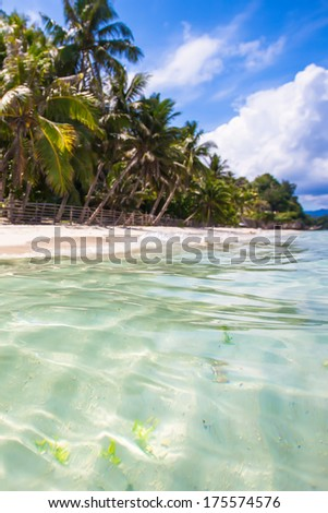 Perfect beach with green palms,white sand and turquoise water