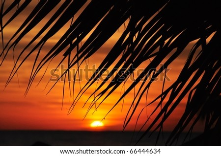 perfect caribbean sunset - stock photo