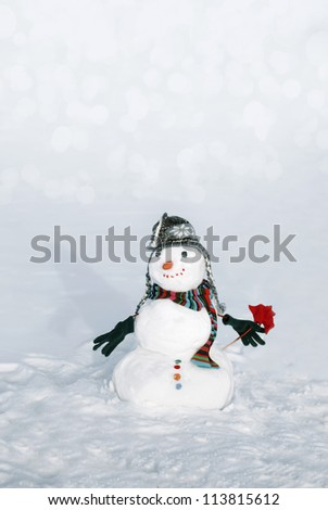 Perfect snowmen with flower and happy face - stock photo