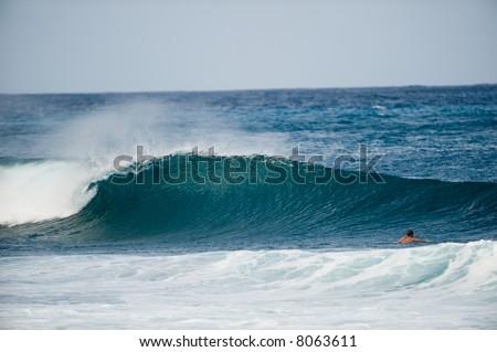 perfect wave - stock photo