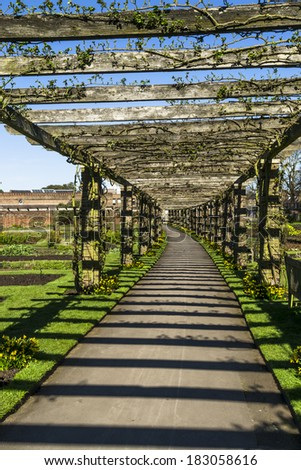Pergola in Kew Gardens with stripes formed by sunlight shining through - stock photo