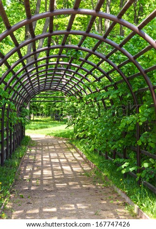 pergola in the garden. - stock photo