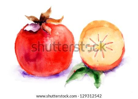 Persimmon, watercolor illustration - stock photo