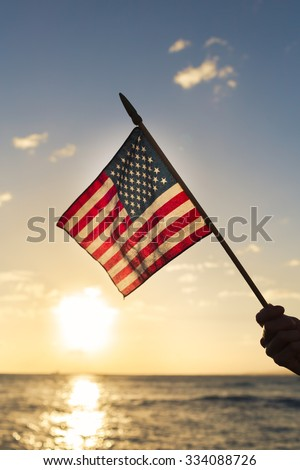 Person holding a USA flag.