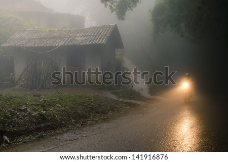Person on bike riding through the misty forest - stock photo