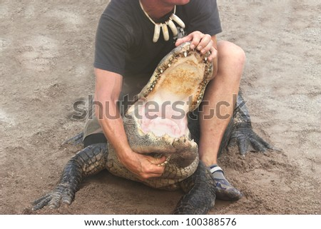 Person performing a stunt with alligator