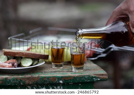 Person pouring brandy into glasses at picnic