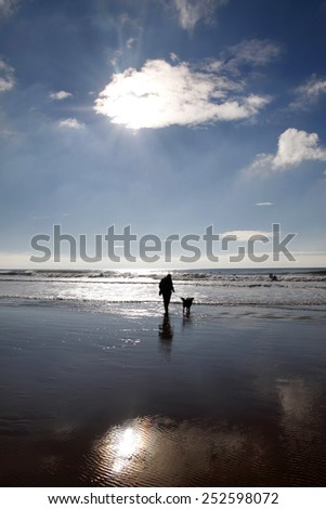 Person walking a dog on a beach in winter with a sunburst behind a cloud