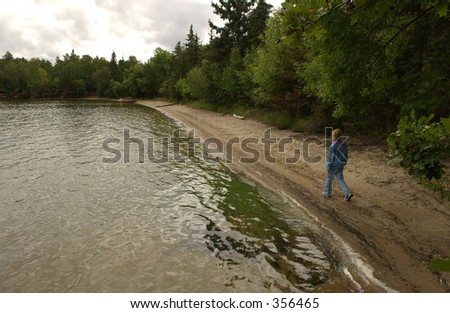 Person walking on a lakeshore,
