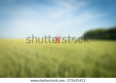 Person wearing red hood and scythe in green field - stock photo