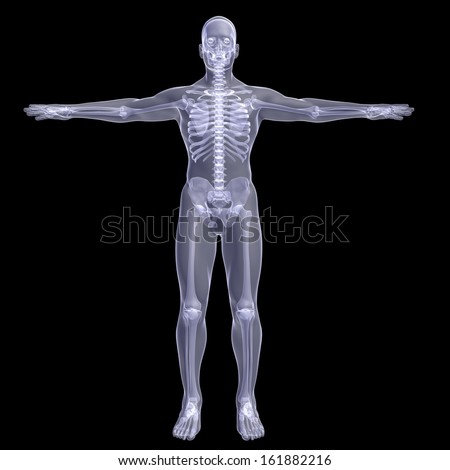 Person. X-ray render on a black background - stock photo