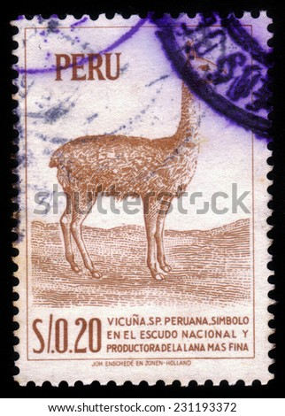 PERU - CIRCA 1966:A stamp printed in Peru shows a llama, circa 1966 - stock photo