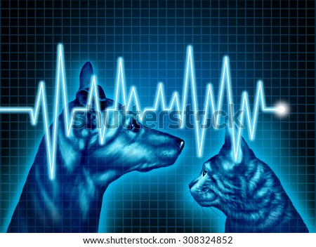 Pet health care and medical insurance for pets concept as an illustration of a dog and cat with an ecg or ekg monitor lifeline as a veterinary symbol and veterinarian doctor services.