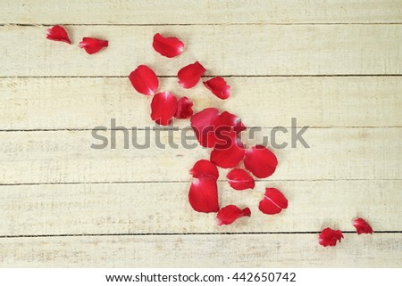 Petals of roses on wooden board, Valentines Day background, wedding day