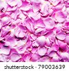 petals pink roses  background - stock photo