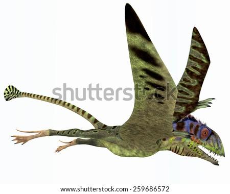 Peteinosaurus Dinosaur - Peteinosaurus was a small carnivorous pterosaur from the Triassic Period and was found near Cene, Italy.  - stock photo