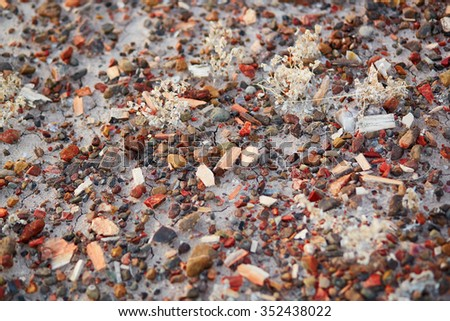 Petrified splinters in the Painted desert and Petrified forest national park, Arizona, USA - stock photo