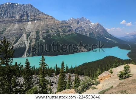 Peyto Lake (pea-toe) in Banff National Park, Alberta, Canada.  - stock photo