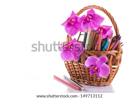 Phalaenopsis branch with colored pencils on white background - stock photo