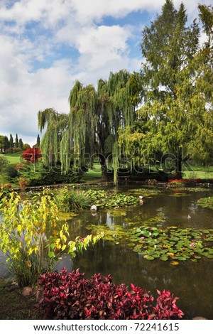 Phenomenally beautiful park-garden Sigurta. Shallow pond, trees and flowers - stock photo