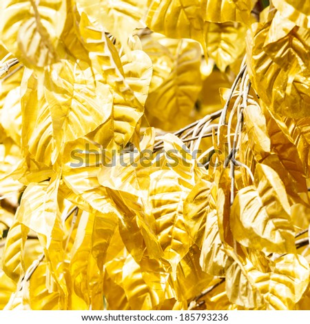 pho or bodhi leave with gold colour - stock photo