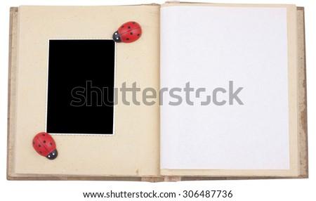 Photo album with ladybug - stock photo