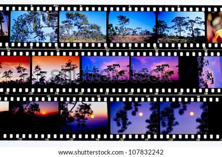 Photo film - stock photo