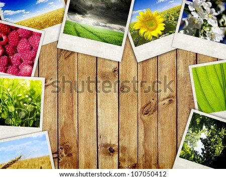 Photo frames over wooden planks background. Nature pictures - stock photo