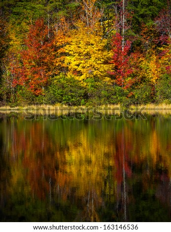 Photo from Crowders Mountain State Park durin the Fall of 2013 - stock photo