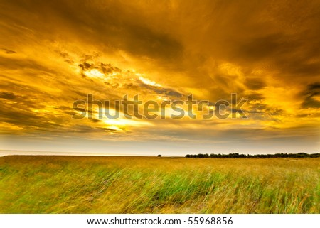Photo of a landscape with a brilliantly detailed foreground and a golden sunset sky