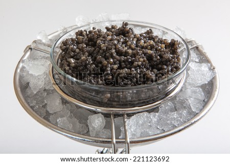 Photo of black caviar on ice close up - stock photo