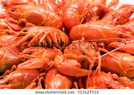 Photo of boiled crayfish on a plate - stock photo
