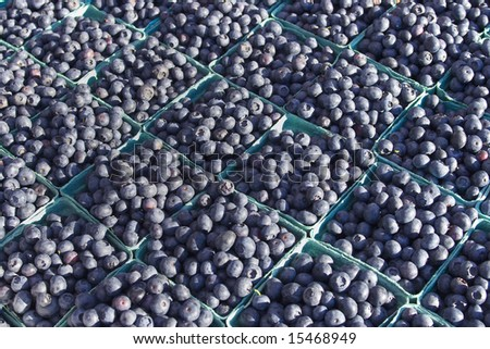 Photo of bunches of blueberries. Horizontally framed photos.