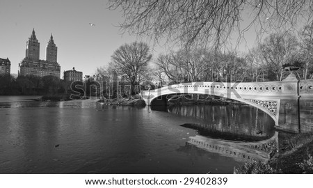 Photo of Central park in the winter - stock photo