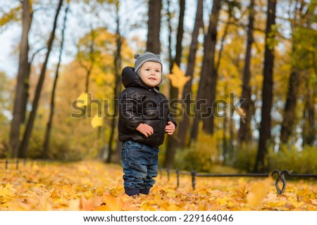 Photo of cute little boy enjoying autumn nature, pretty infant playing in park, cheerful baby boy having fun outdoors, adorable kid in fall forest, happy child play with dry orange maple leaves - stock photo
