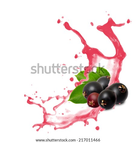 Photo of elderberry with leaf and splash isolated on white - stock photo