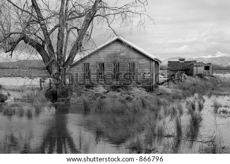 Photo of flooded pastures and buildings on Svensen Island, near Astoria, Oregon
